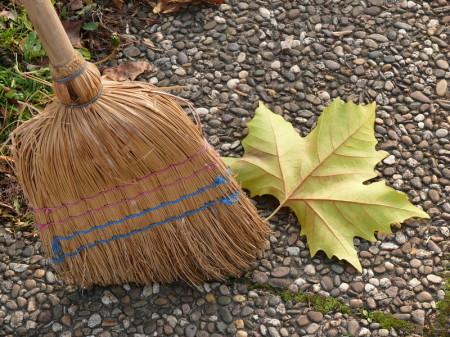 Reinigung Biomülltonne, Kehrwoche, Mülltonnen Abholung